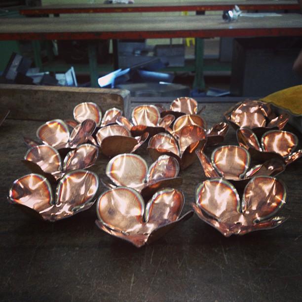Copper Forever Rose