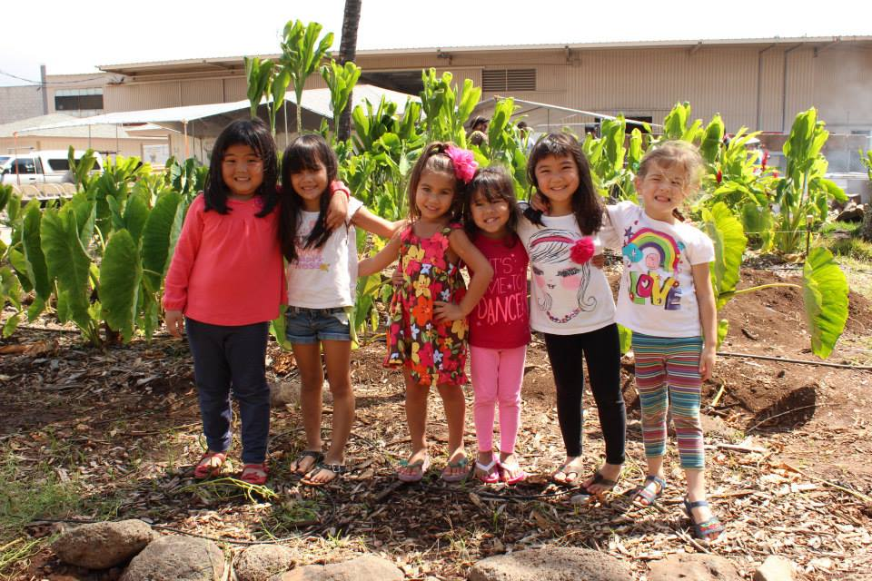 Honolulu CC ECE Program