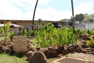 HonoluluCC Mala