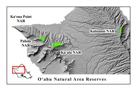 OahuNAR-1024x683.jpg