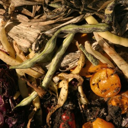 compost-materials-1.jpg