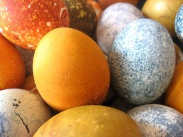 eggsclose1.jpg