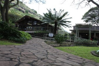 halawa-xeriscape-garden-2012-03-10-009.jpg